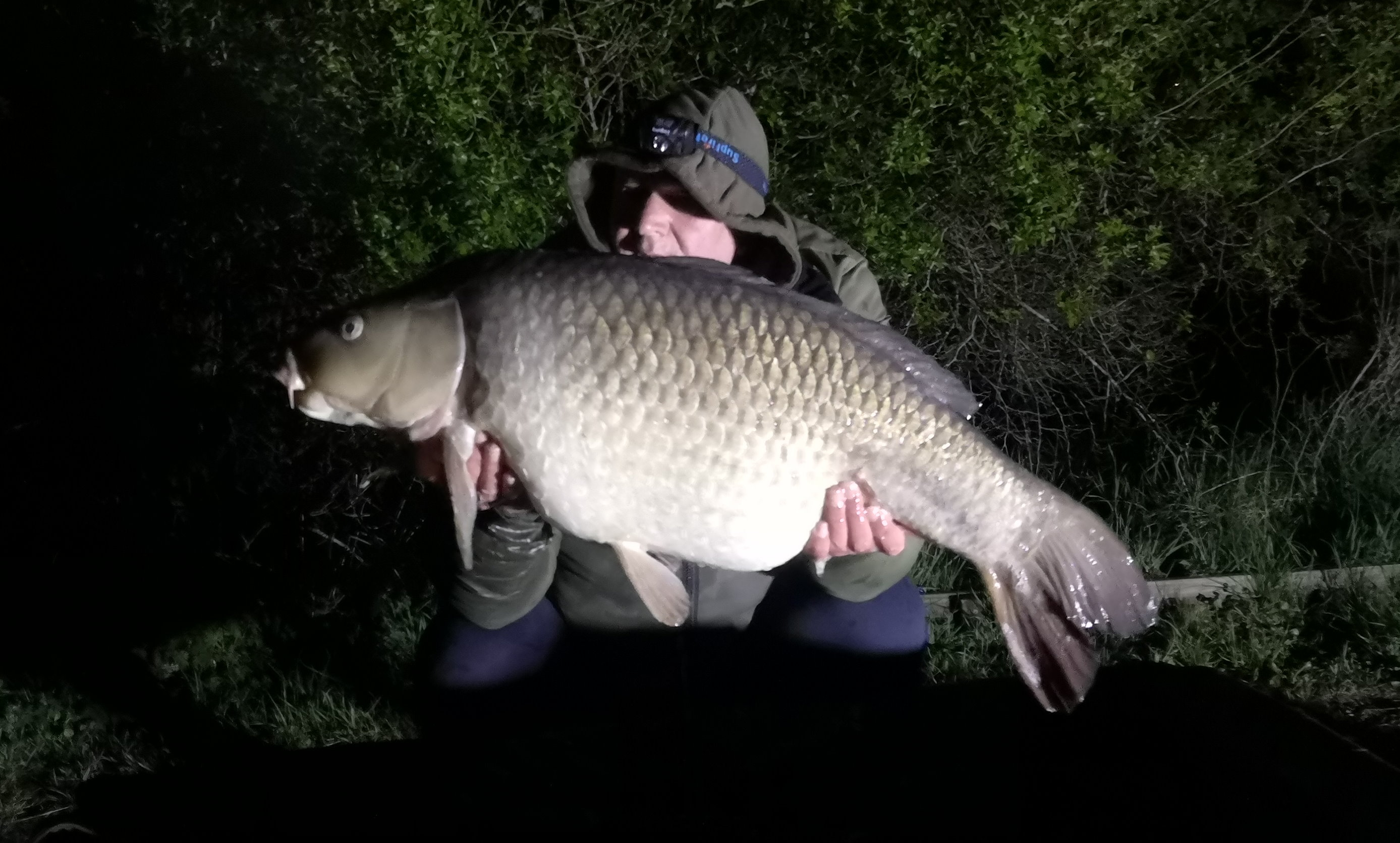 Steve Cartwright Carp Tackle Online