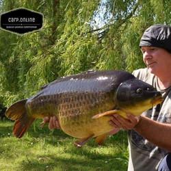 mega common carp tackle online