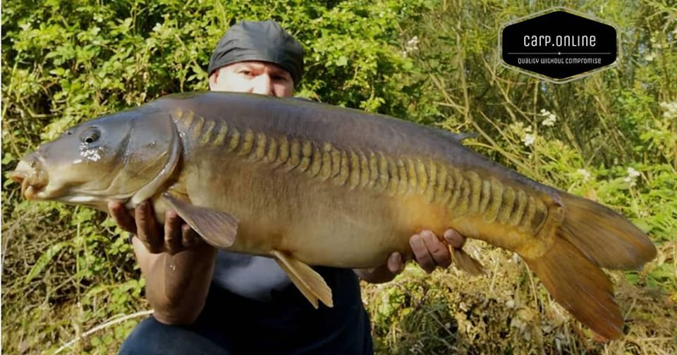 Carp Tackle Online - The perfect Zip Lin