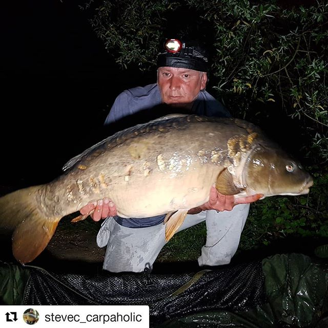 #Repost _stevec_carpaholic (_get_repost)_・・・_He's been on them again, nice one Steve 👍_Tad under 35