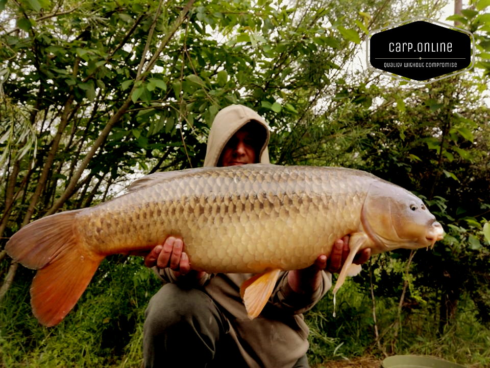 2513common - Carp Tackle Online