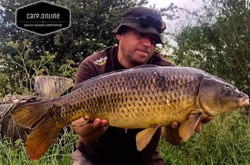 carp tackle online