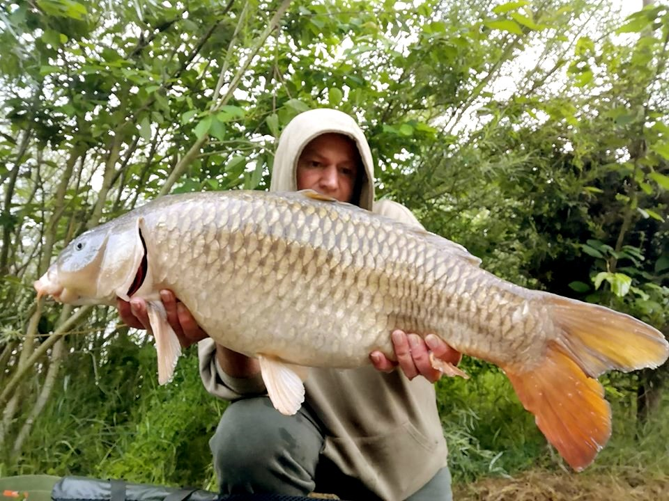 2007common carp tackle online