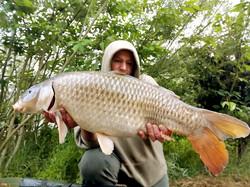 2007common carp tackle online