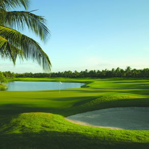 【最新】PGAツアーのフェデックスランキングとポイントの決め方(2020年)
