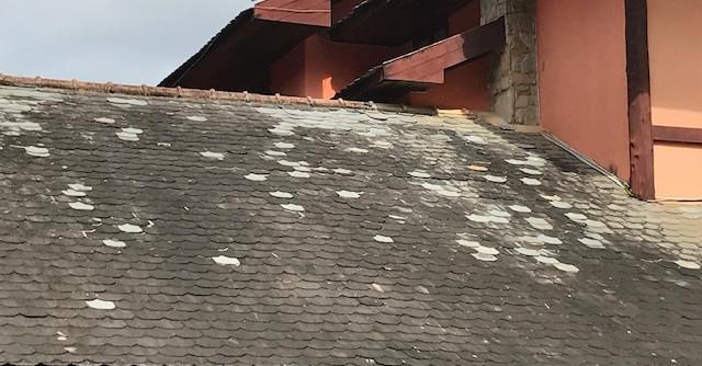 Foto telhado 1.jpg