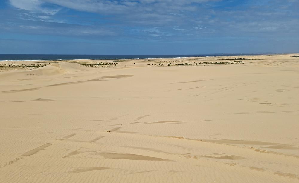 Port Stephens Stockton Sand Dunes