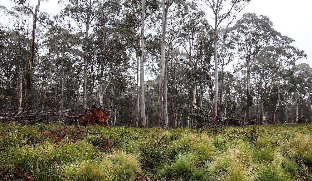 Aussie-Ark Sanctuary