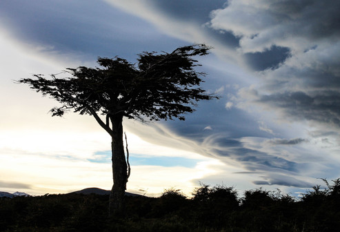 Patagonia -120.jpg