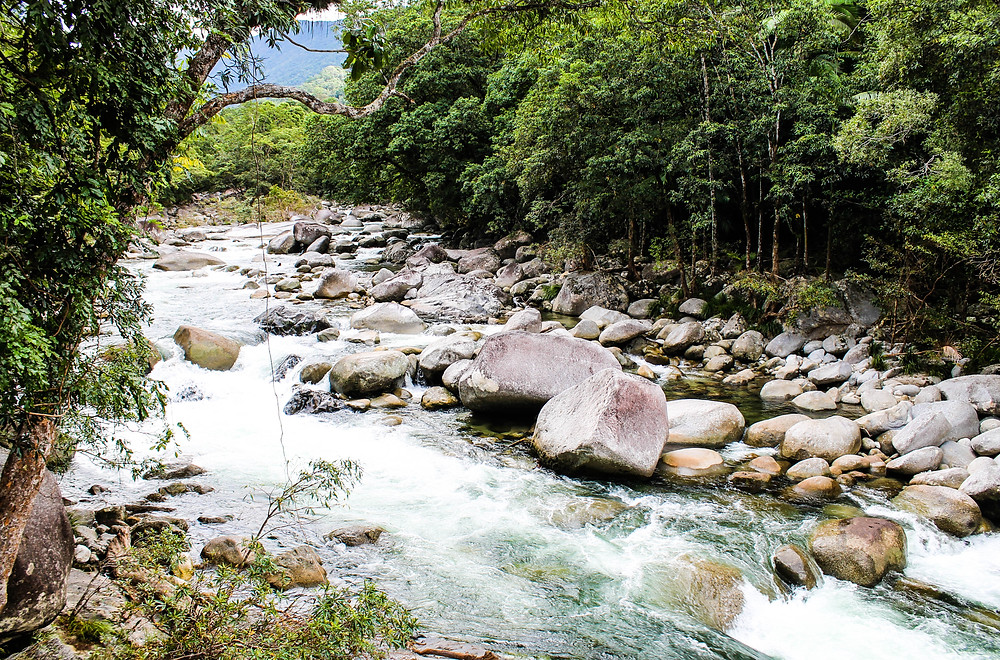 Mossman Gorge near Port Douglas
