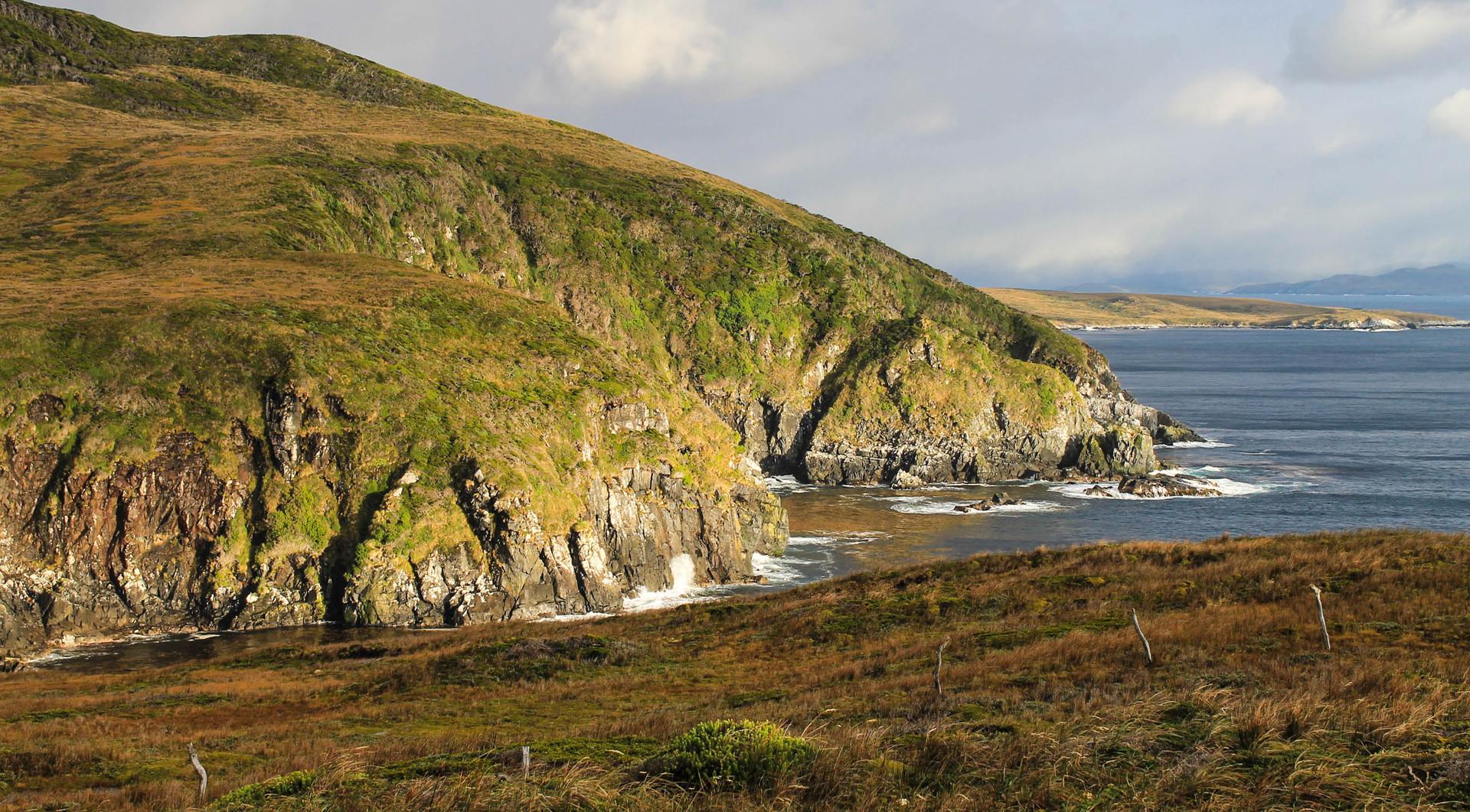 Cape Horn -113.jpg