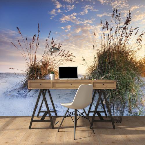 White Sand Dunes Mural