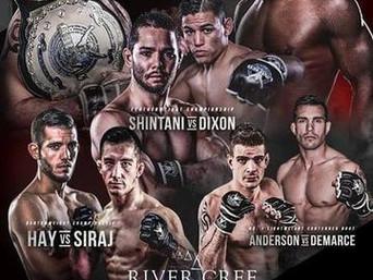 Unified MMA 35 - Teddy Ash vs Dominique Steele