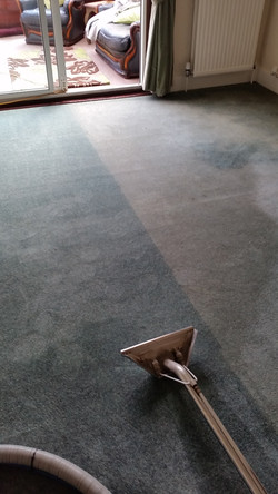 Carpet - Before and After (2)