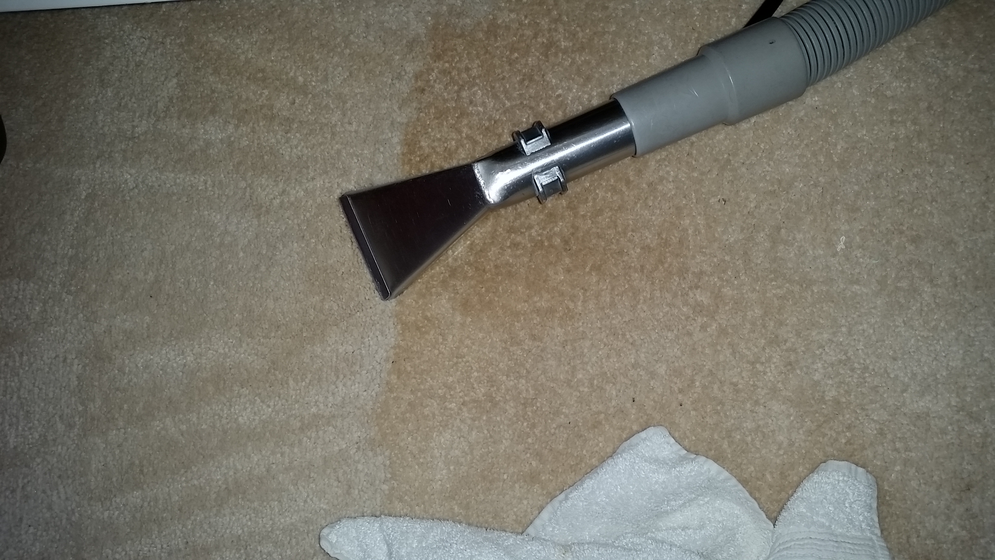 Carpet - Before and After