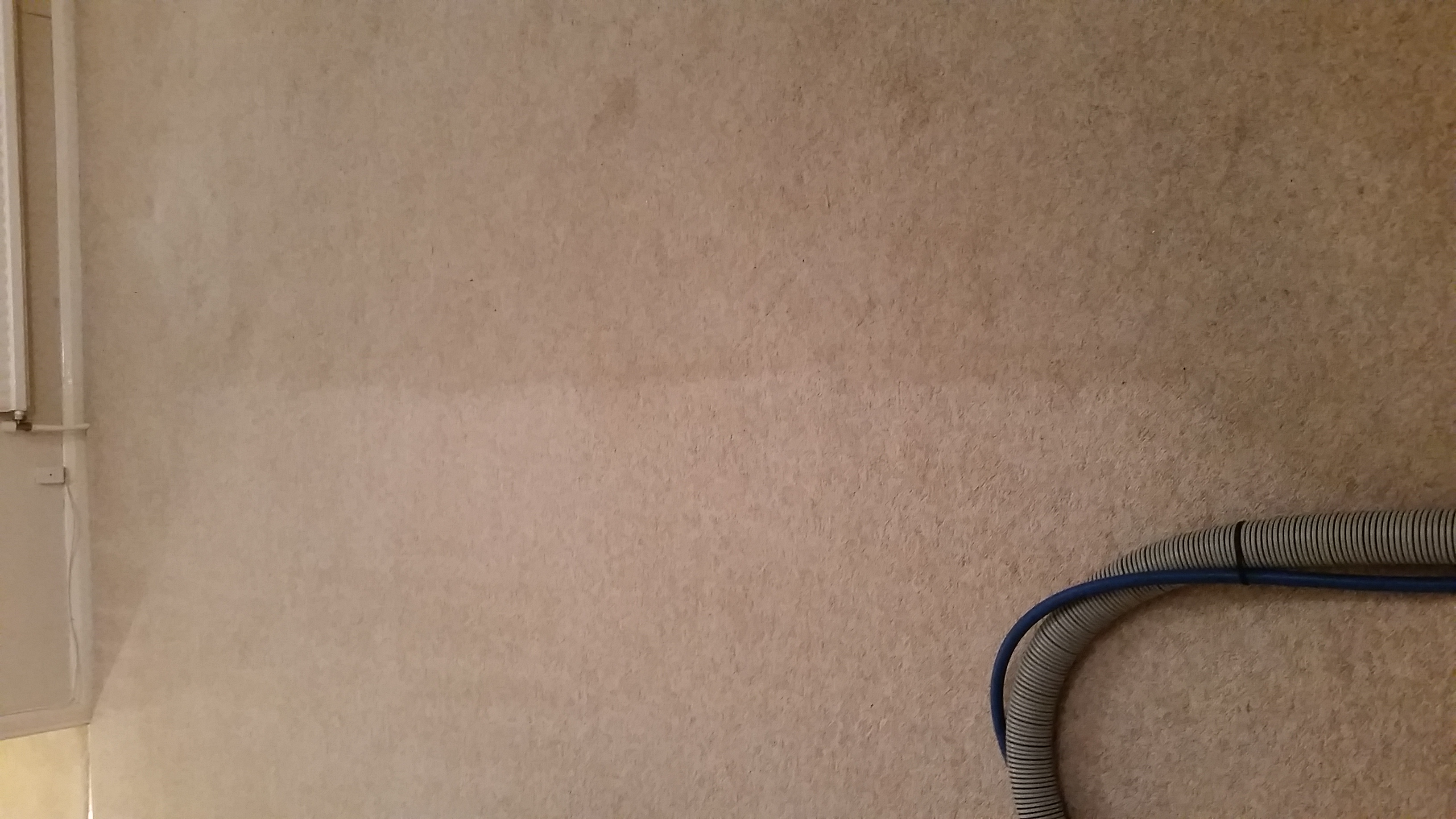Carpet - Before and After (3)