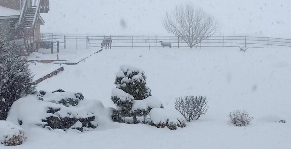 Winter has arrrived!