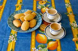 Citron Coated Cotton Tablecloths
