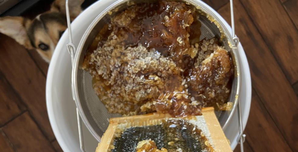 Processing Honey