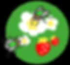 ■ヒロズキンバエと土台.png