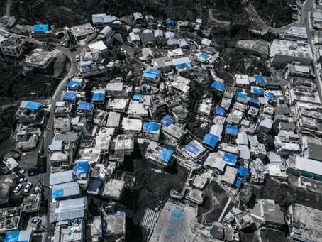 Disaster Capitalist vs. Disaster Preventionist