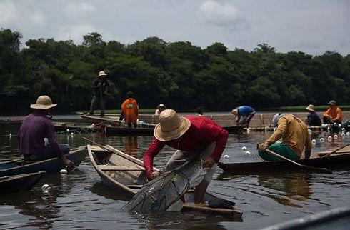 pescadores amazonia.jpg