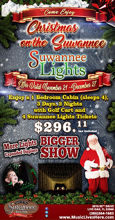 Suwannee Lights 5.5x10-ChristmasOnTheSuw