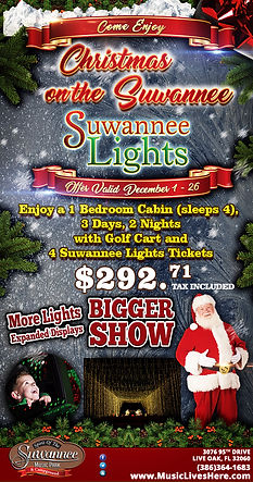 SuwLights-5.5x10-ChristmasOnTheSuw2019.j
