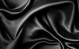 Silk Blatt Transparent