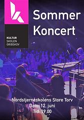 sommerkoncert 2019_edited.jpg
