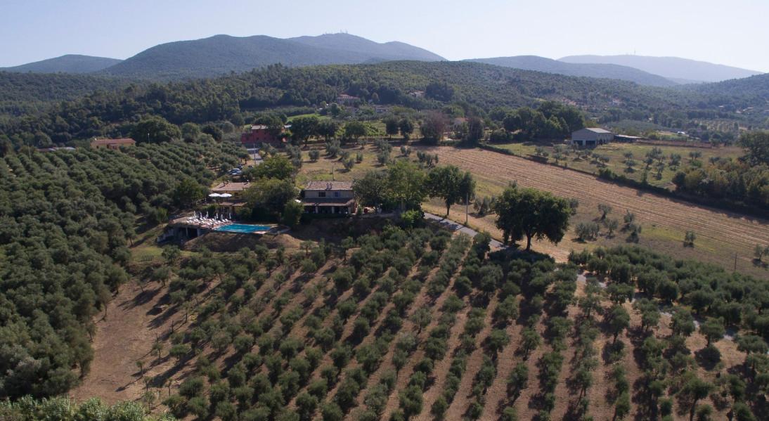 olijfgaard drone opname