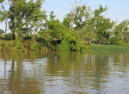 La justicia de Entre Ríos limita pesca comercial en el Paraná.