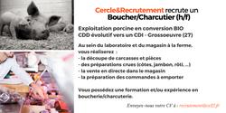 CDD/CDI Boucher/Charcutier (27)