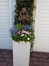 Blumentopf-Ferienwohnung-am-Kurpark-luen