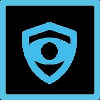 logo_tichodrone_securité.png