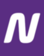 netshoes_n.png