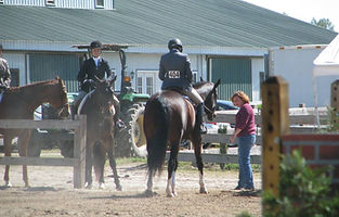 horse training at a show