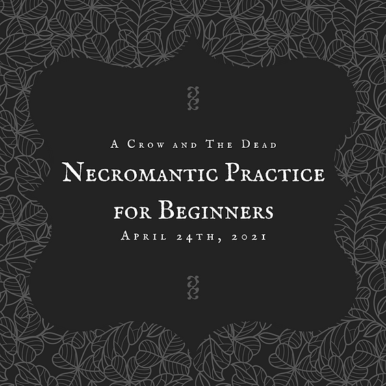 Necromantic Practice for Beginners