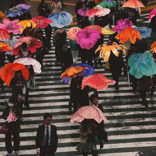 Flower_Umbrellas square.jpg
