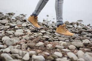 Prehistoric Rocks