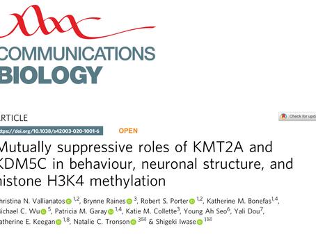 New KDM5C paper published!