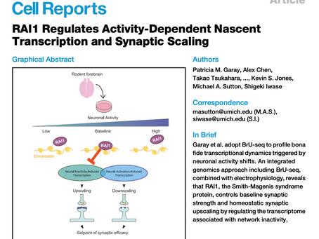 New RAI1 paper published!