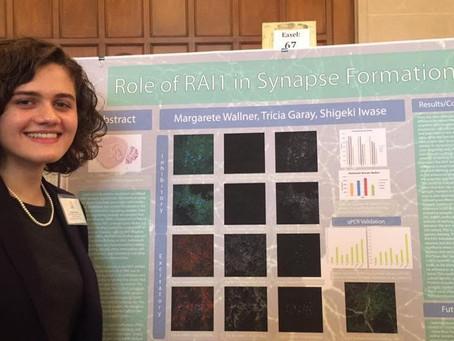 Margarete presents RAI1 research at UROP Spring Symposium!