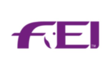 Official FEI logo thumbnail for Press_7.