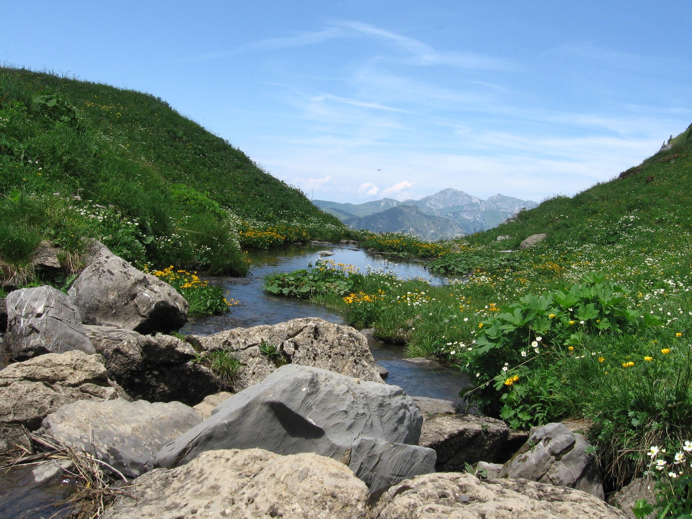 Torrent Haute-Savoie
