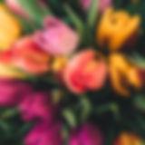 Весенние Розы