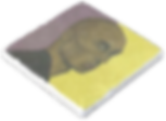 Image%25205-2-20%2520at%25205_edited_edi