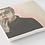 Thumbnail: Francis Bacon