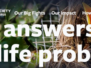 Find Answers to Wildlife Problems
