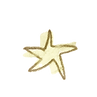 star2_edited.png